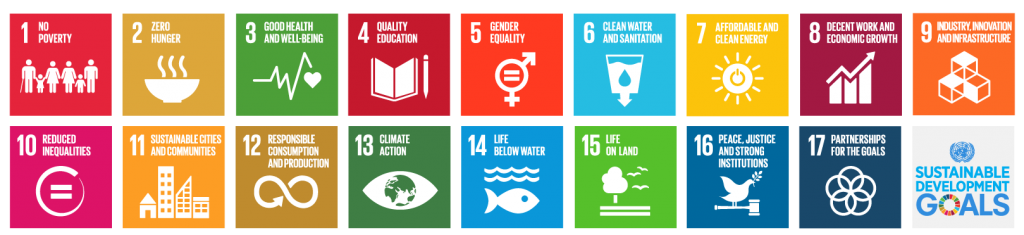 UN Sustainability Goals icons